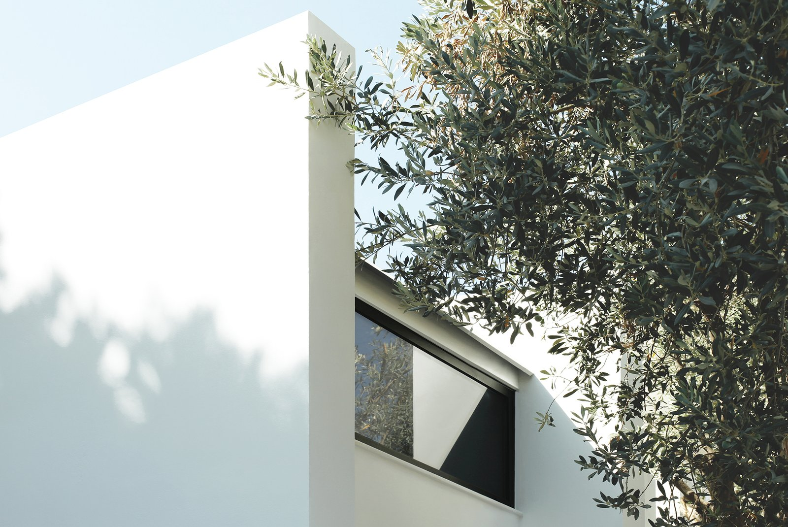 Modular concrete panels that make up the walls, while clerestory windows help keep the interiors bright.