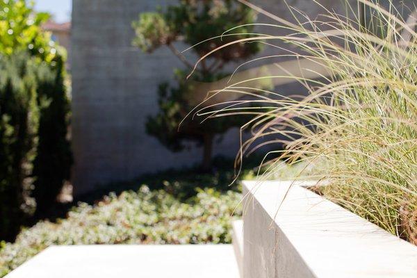 Photo 8 of Trotman Residence modern home