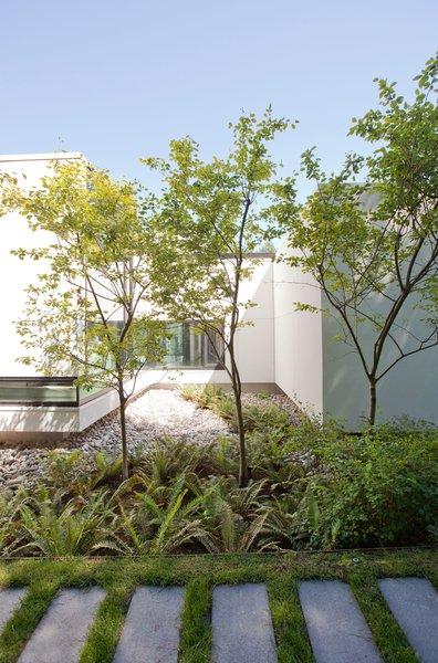 Photo 9 of Yan Residence modern home