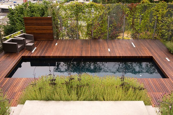 Greenscreen/ IPE hard wood deck/ Pool  Photo 5 of Young Residence modern home
