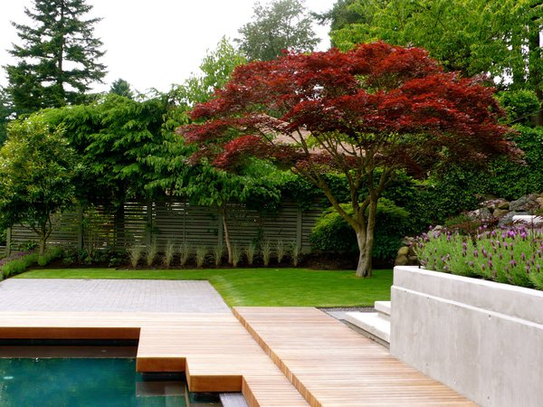 Pool edge/ Basalt Patio Photo  of Young Residence modern home