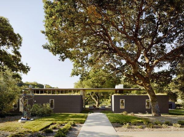 #TurnbullGriffinHaesloop #outdoor #exterior #landscape #livingroof Photo  of Sonoma Residence modern home