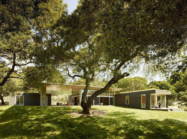 #TurnbullGriffinHaesloop #outdoor #exterior #landscape #livingroof Photo 2 of Sonoma Residence modern home