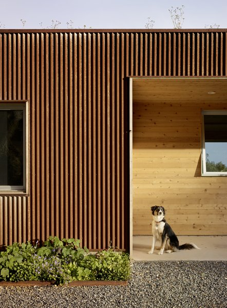 #TurnbullGriffinHaesloop #exterior #corten  Photo 14 of Cloverdale Residence modern home