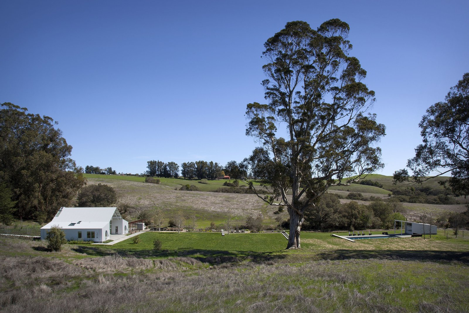 #TurnbullGriffinHaesloop #exterior #site #landscape #barn Hupomone Ranch by Turnbull Griffin Haesloop Architects