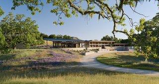 Focus on Feldman Architecture's Environmentally-Conscious Homes - Photo 5 of 5 - Caterpillar House