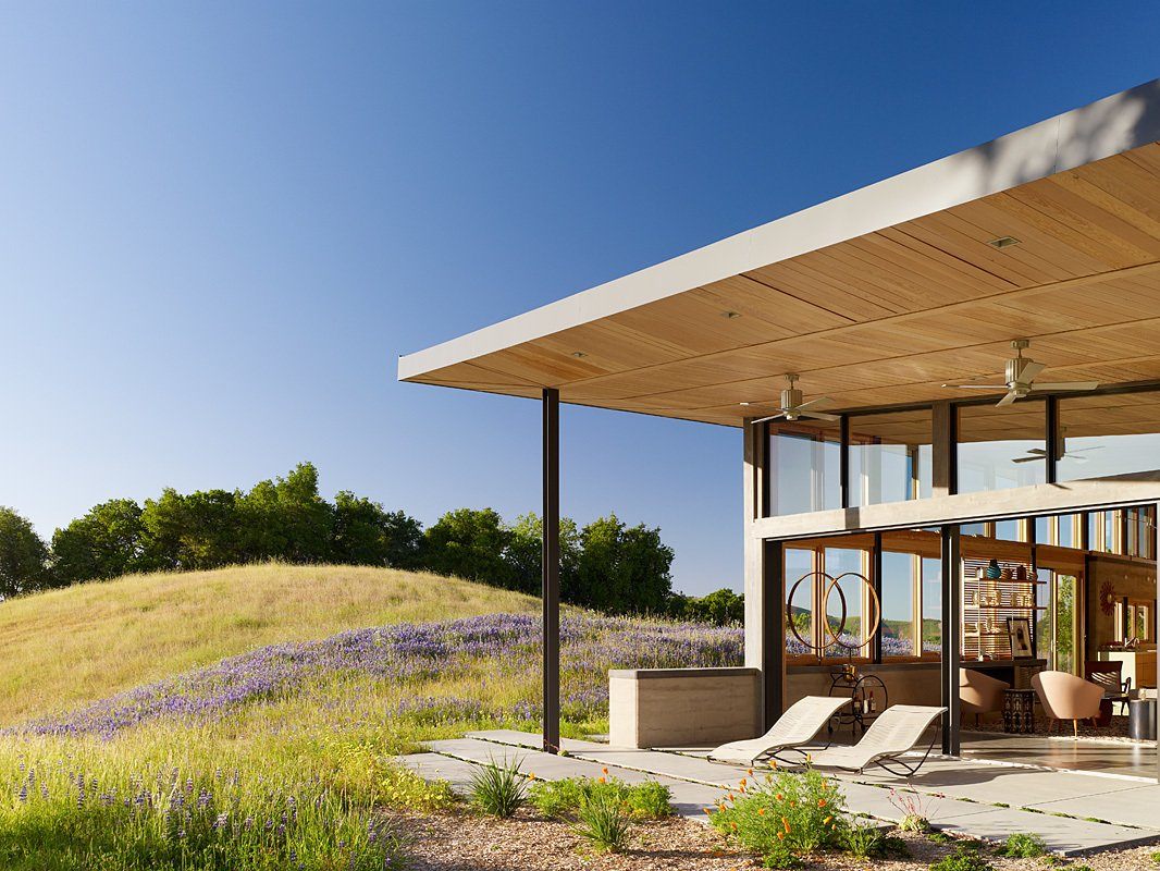 Caterpillar House  Caterpillar House by Feldman Architecture