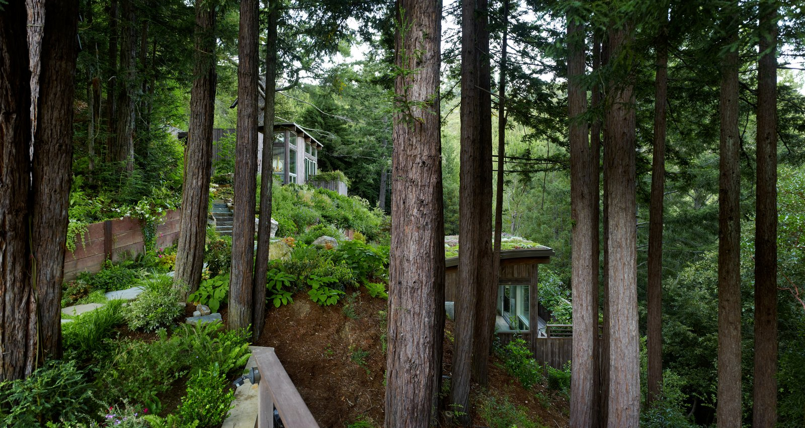 Mill Valley Cabins