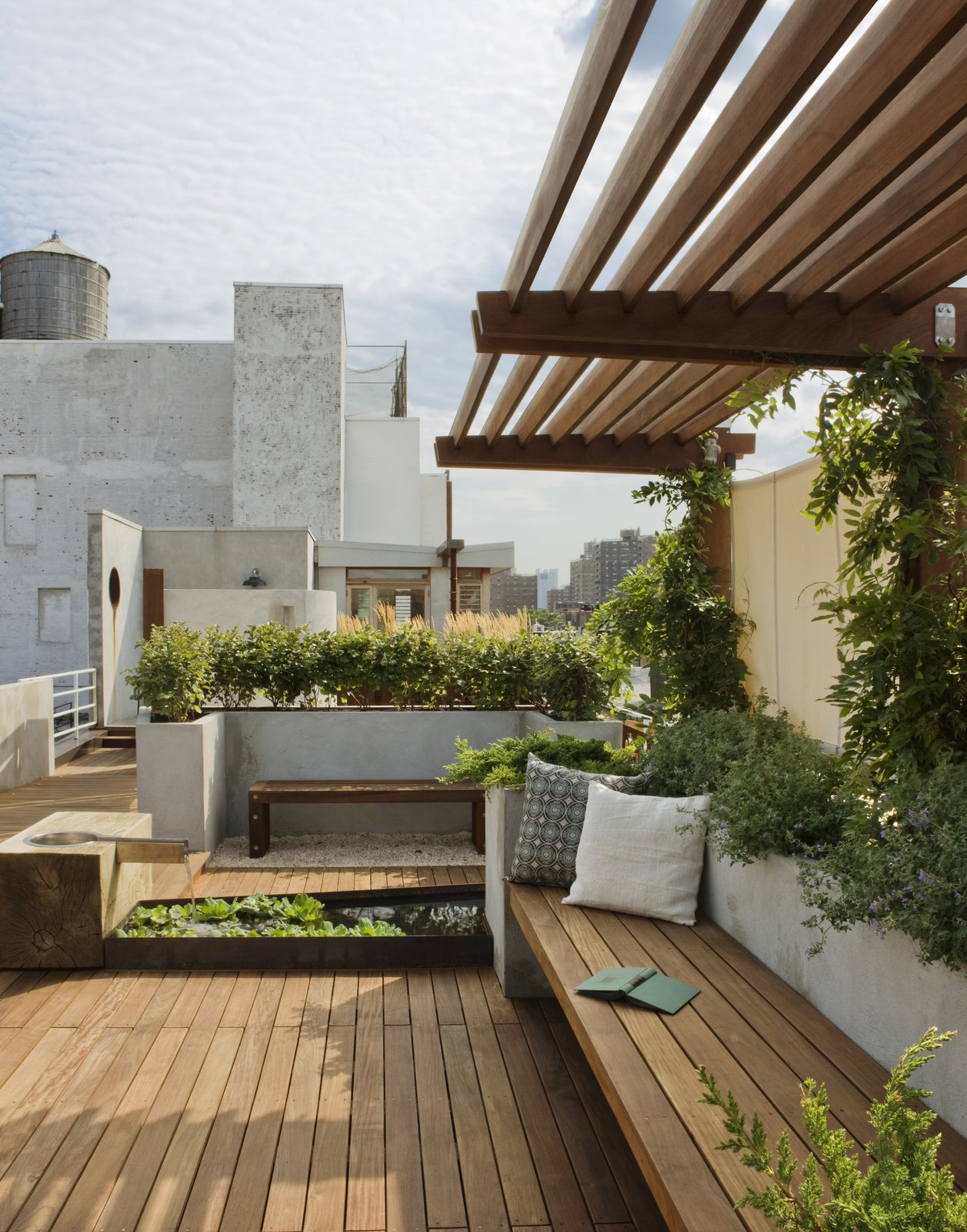 A view looking south toward the penthouse addition.  The pergola is planted with wisteria providing a welcoming shade.