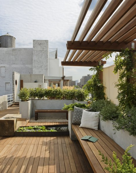 A view looking south toward the penthouse addition.  The pergola is planted with wisteria providing a welcoming shade. Photo 10 of East Village Roof Garden modern home