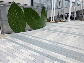 Large Scale CalArc Pavers line the Google campus in Mountain View, California.