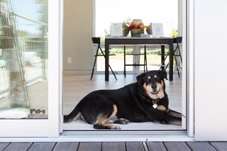 Make the Dwell Prefab Your New Home For $90K - Photo 7 of 15 -