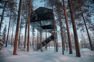 10 Surreal Tree Houses That Will Make Your Childhood Dreams Come True - Photo 3 of 10 - Treehotel's 7th room in Sweden is a cabin that's propped up in a pine canopy where guests can book a stay. To reduce the load of the trees and minimize the building's impact on the forest, 12 columns support the cabin. One tree stretches up through the net, emphasizing the connection to the outdoors.