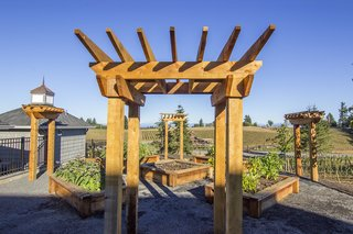 """Sustainable Redwood Stars in an Oregon Architectural Showcase - Photo 4 of 6 - Mon Coeur—or """"My Heart""""—is a Hamptons-style dwelling with an emphasis on the outdoors. Humboldt Redwood arbors and planter gardens create a fruitful garden."""