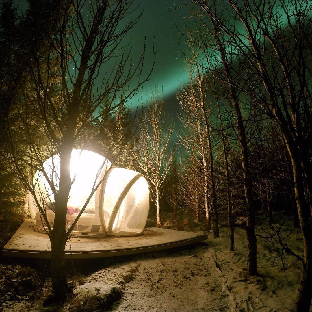 Tagged: Outdoor, Trees, and Woodland.  Photo 6 of 6 in Sleep Under the Northern Lights in an Icelandic Bubble Hotel