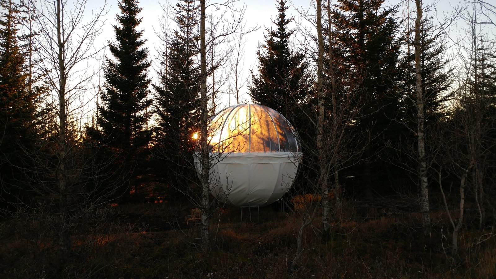 Tagged: Outdoor, Woodland, and Trees. Sleep Under the Northern Lights in an Icelandic Bubble Hotel - Photo 3 of 6