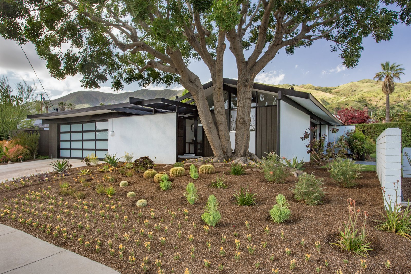 Tagged: Outdoor, Front Yard, and Trees.  Photo 1 of 14 in Offered at $899K, a Restored Midcentury Abode Shines in Southern California