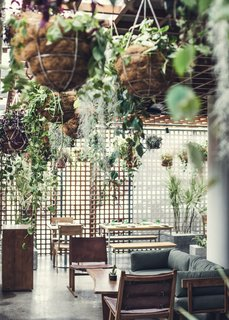 Go Beyond the Basics in an Australian Fashion Designer's Surf-Inspired Bali Hotel - Photo 4 of 11 - Hanging plants create an atrium atmosphere in Eat & Drink, which is open for service all day.
