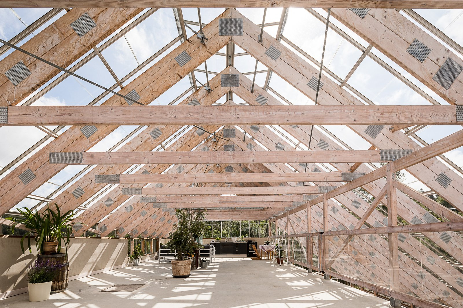 Tagged: Outdoor and Rooftop.  Photo 8 of 12 in Make This Enchanting Swedish Greenhouse Your Home For $864K