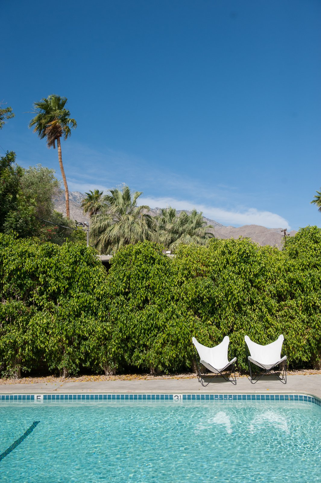 Photo 8 of 12 in A Celebrated Palm Springs Hotel Asks $1.8M