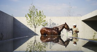 Celebrated Polo Player Nacho Figueras Commissions a Low-Slung, Concrete Stable - Photo 4 of 11 -