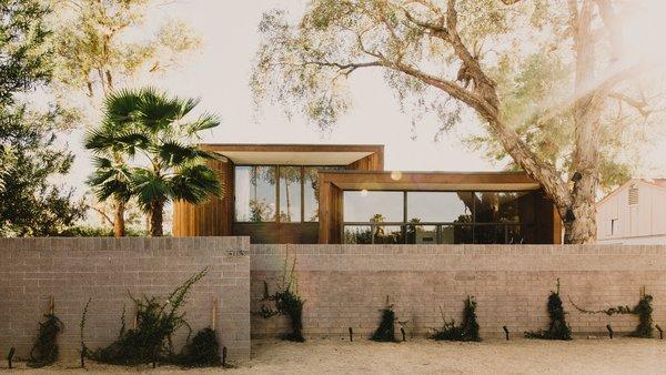 #modern #organic #exterior #wood #concrete #desert  #phoenix #arizona Photo 17 of Curves House modern home