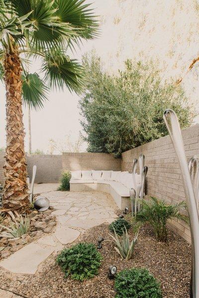 #modern #courtyard #wood #landscape #glass #sculpture #organic #succulent #phoenix #arizona Photo 18 of Curves House modern home