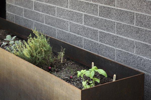 Cor-ten steel planter