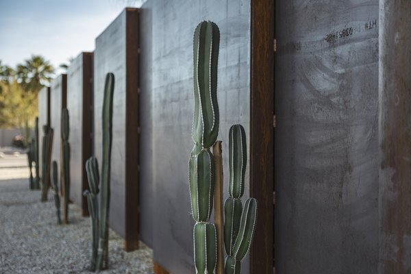 Site fence with Mexican Fence Post cacti