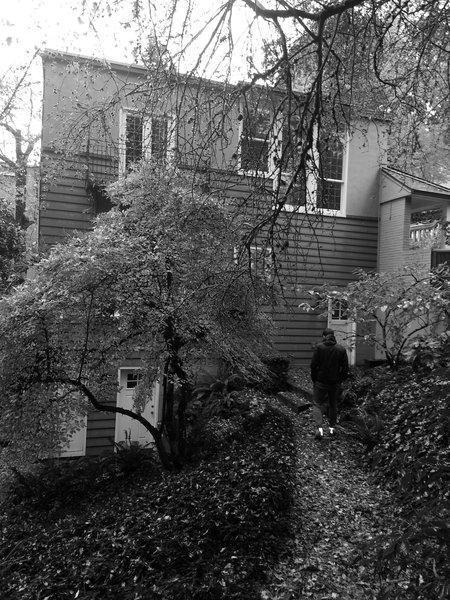 Before: Side Yard Photo 2 of Heiser Residence modern home