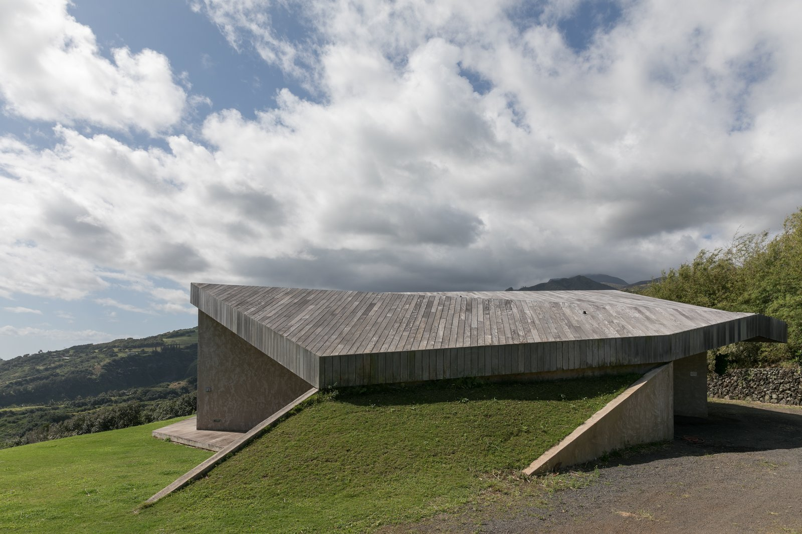 Organic Architecture exemplified here - an Ipe clad roof top rises gently from the grass.