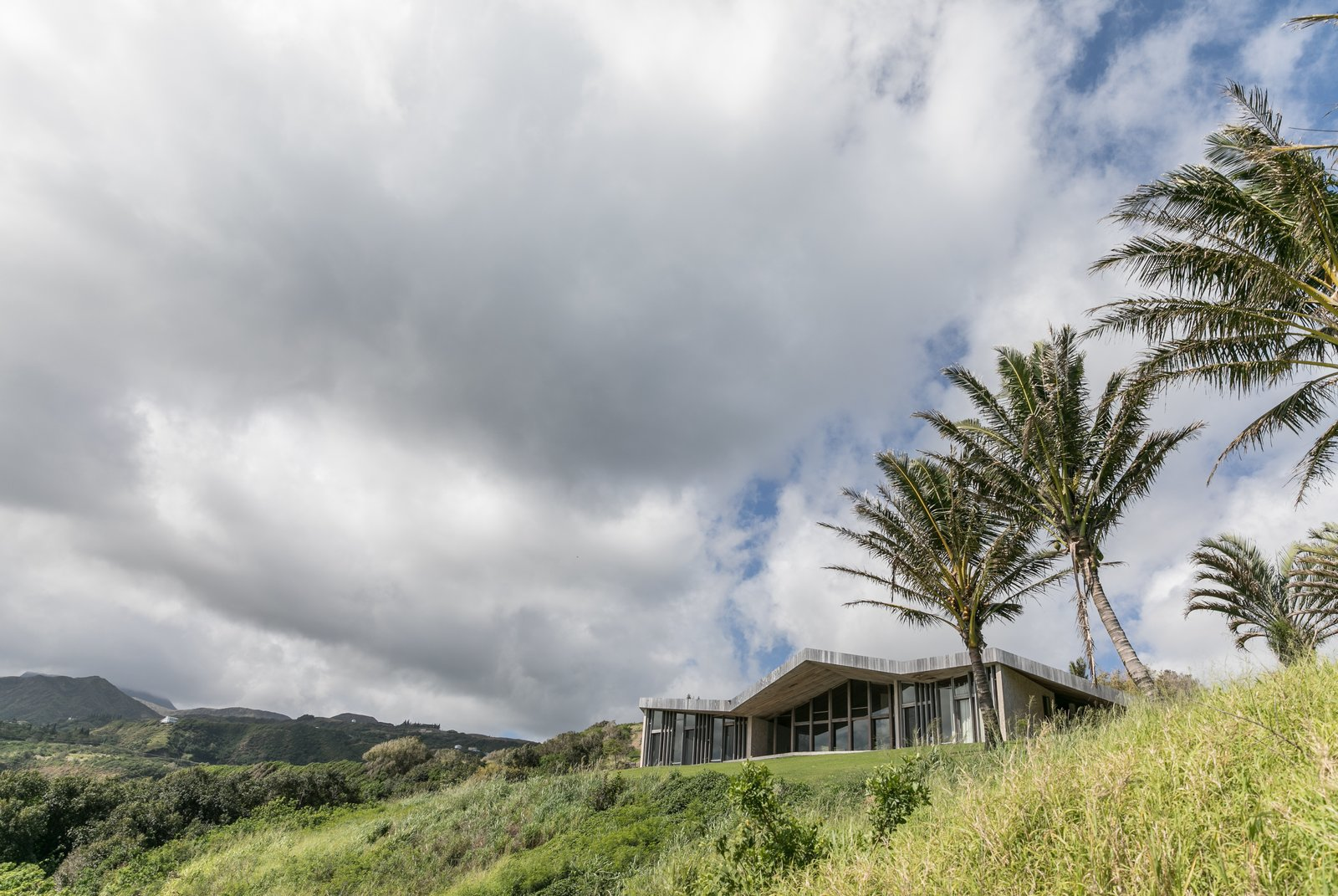 Tagged: Outdoor, Front Yard, and Trees.  The Clifftop House by Modern on Maui - Liam Ball