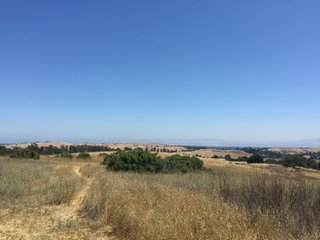 Arastradero Preserve - Photo 2 of 6 - The beautiful Bay Area.