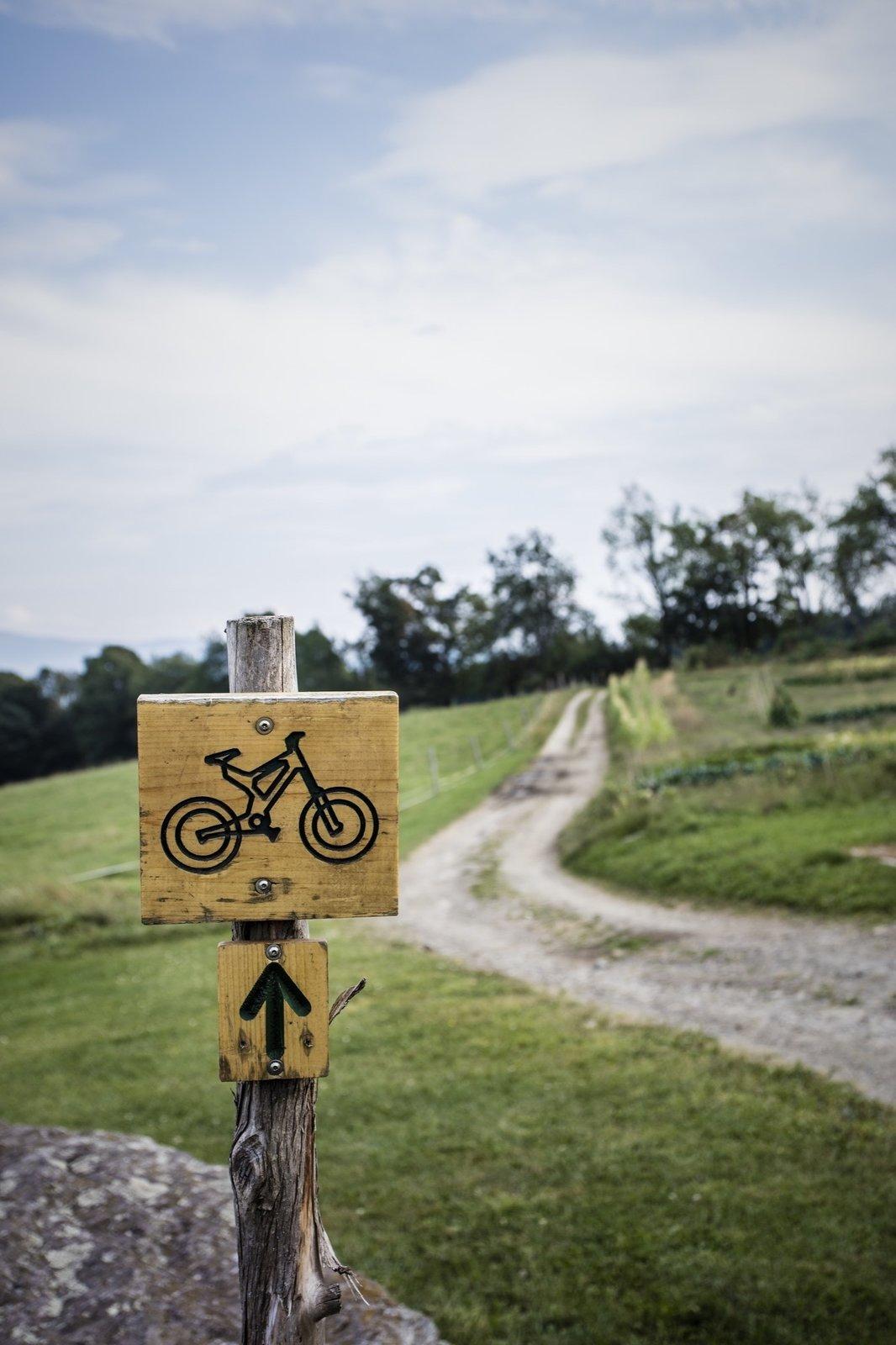 Trails at the von Trapp resort in Vermont.  Photo 5 of 8 in Summer Graze