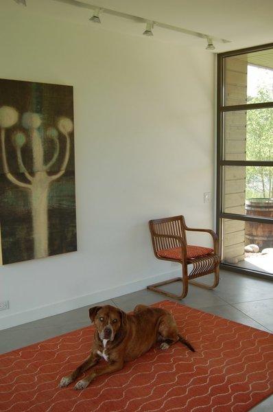 Ripple rug / Prairie Collection