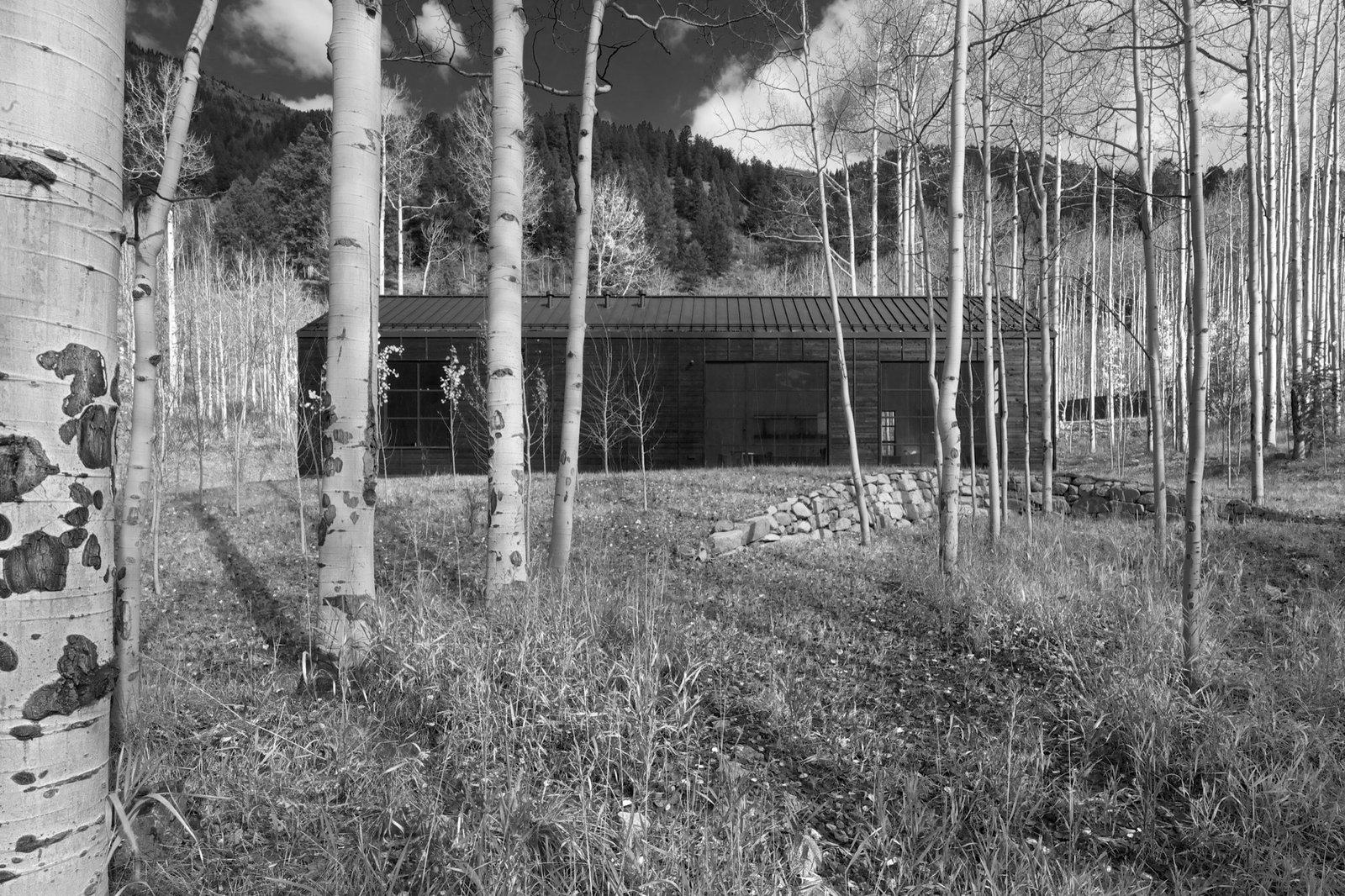 Retreat in the Aspen Grove - Photo 1 of 13