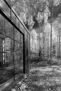 Retreat in the Aspen Grove - Photo 3 of 12 - Exterior details reference the immense verticality of the aspen trees.