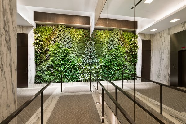 Another striking component of the project is the Biophilia and the use of nature to improve the building's living conditions. Featuring a planted living green wall in the lobby, which offers aesthetic charm while contributing to a healthy and natural ventilation system. These materials help execute the vision of excellence, sustainability, and historic preservation – choosing to honor the past while building for the future. Photo 7 of An Historic TriBeCa Building Reborn modern home