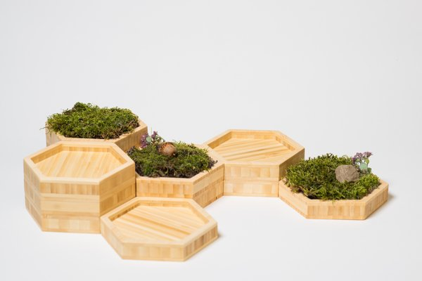 "The hexagonal moss gardens bring the Northeast Woodlands inside. The beauty of a moss garden is that it looks terrific even when kept dry, perfect for the ""busy"" lifestyle.  Find the Modify Furniture Home Decor Collection at www.modifyfurniture.com/homedecor  Photo 4 of Modern, Minimalist and packed with Meaning modern home"