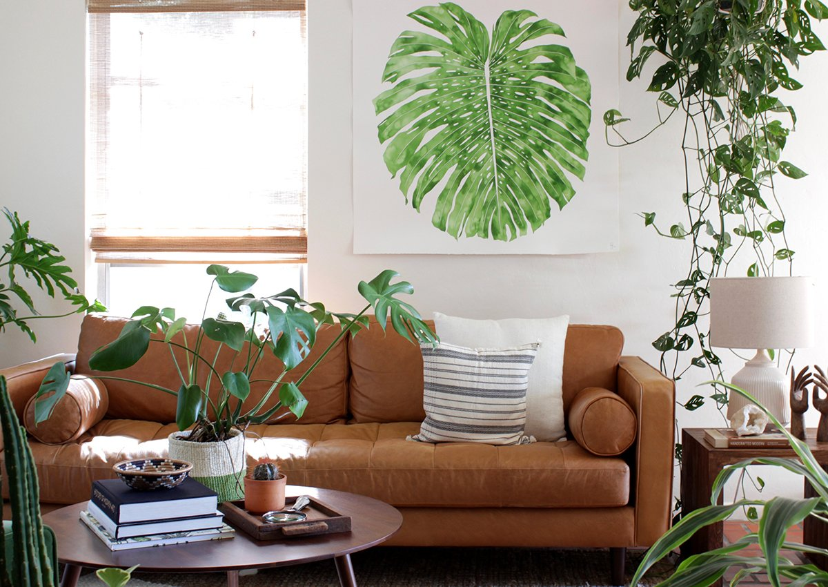 Hanging planters, potted plants, and Jenny's own vivid work bring life and color to her otherwise warm and neutral space.  Photo 4 of 7 in The Great Indoors