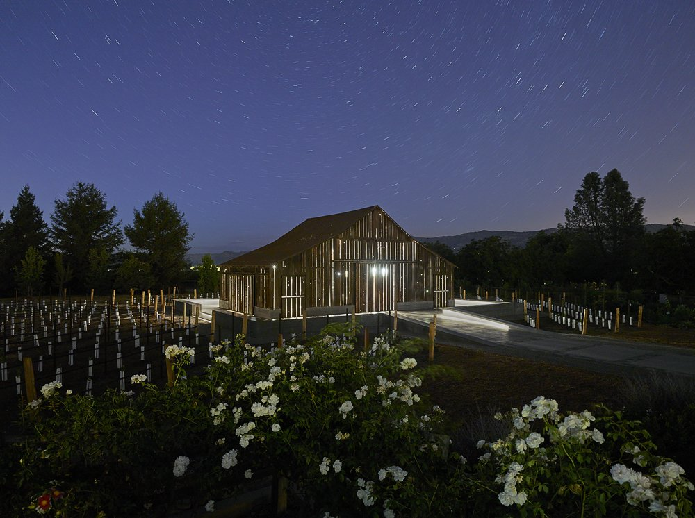 Tagged: Outdoor, Back Yard, Trees, and Flowers.  Napa Vineyard Barn by Centric General Contractors