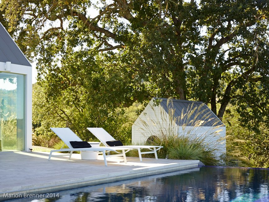 landscape, pool Tagged: Outdoor, Back Yard, Trees, Swimming Pools, Tubs, Shower, Shrubs, Concrete Patio, Porch, Deck, Infinity Pools, Tubs, Shower, and Hardscapes.  The Birdhouse by Centric General Contractors