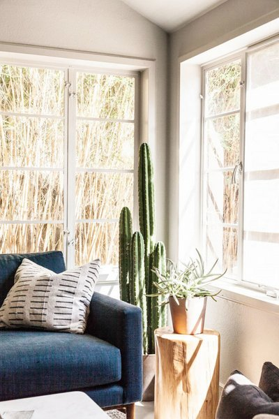 Inside a Hip Austin Apartment With Moody Vibes - Photo 3 of 8 -