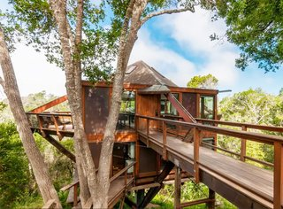 7 Breathtaking Tree Houses You Can Actually Rent on Airbnb - Photo 1 of 7 - Located just outside of San Francisco in Santa Cruz, California, this heavenly home is perfect for a weekend getaway if you're in the bay area. Complete with ocean views and large glass windows that surround the entire structure, it can sleep up to six guests.