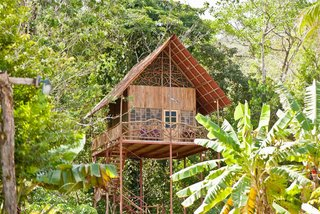 7 Breathtaking Tree Houses You Can Actually Rent on Airbnb - Photo 2 of 7 - There is round-the-clock access to natural hot and cold springs right on the premises. Need we say more? If you love hiking in a tropical setting, then this tree house is the one for you.