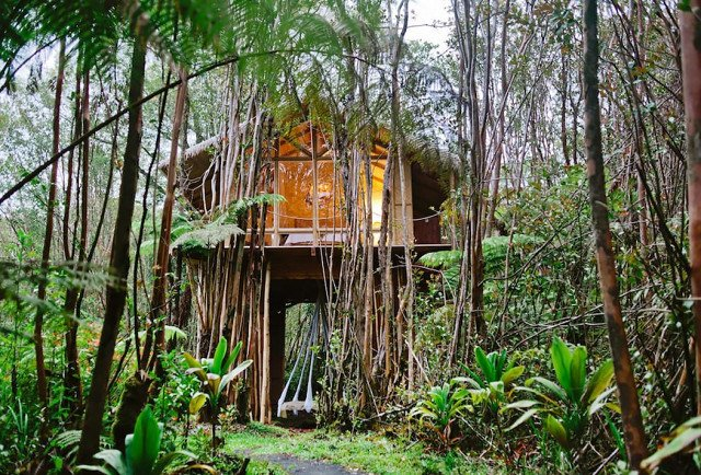 Just look at that dreamy canopy hammock suspending from the floor to the ground level. If you're in need of a slower pace, look no further than this island-jungle abode where bamboo abounds. And if you like the façade, wait until you get a peek inside of the chic interiors.  Photo 3 of 7 in 7 Breathtaking Tree Houses You Can Actually Rent on Airbnb
