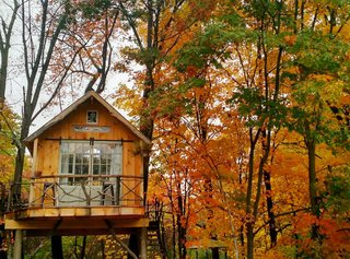 7 Breathtaking Tree Houses You Can Actually Rent on Airbnb - Photo 7 of 7 - It's like tree climbing, but for adults! This Upstate New York tree house is a private little sanctuary best suited for anyone who wants to get some creative inspiration off the beaten path. We'd love to hide out here for a few weeks to transform it into a writer's retreat.
