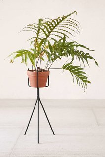 Tour an Insanely Stylish NYC Loft With Major Scandinavian Vibes - Photo 10 of 19 - Urban Outfitters Tripod Plant Stand ($34)