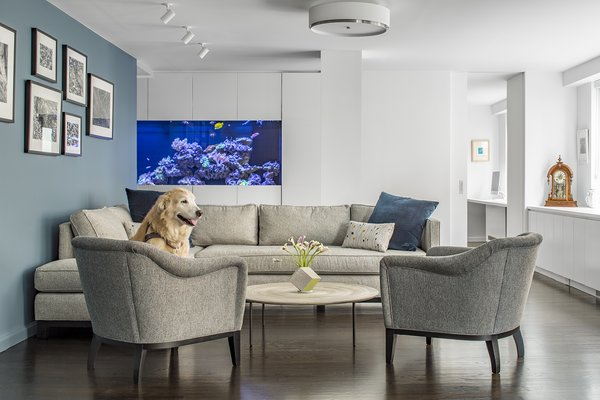 Photo  of Pets Allowed modern home