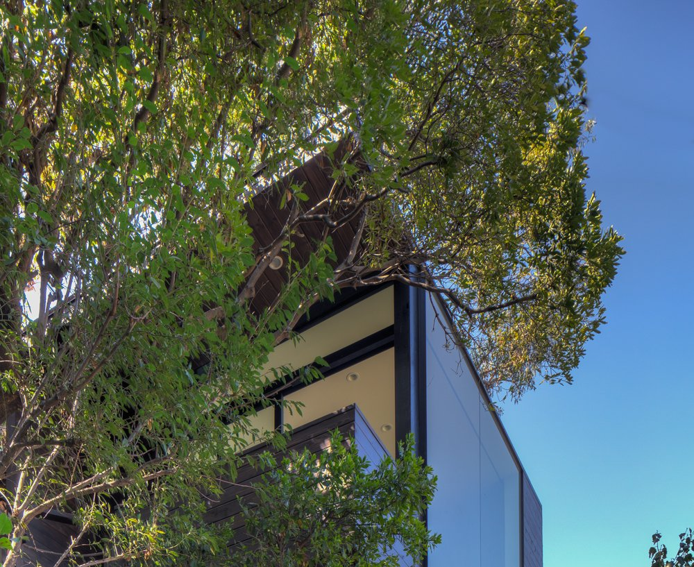 Black Box by ANX / Aaron Neubert Architects